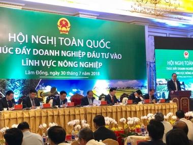 Chung sức đưa Việt Nam vươn lên vị trí hàng đầu thế giới về nông sản