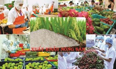 Giá trị xuất khẩu nông, lâm, thủy sản 6 tháng đầu năm 2019 đạt 19,8 tỷ USD