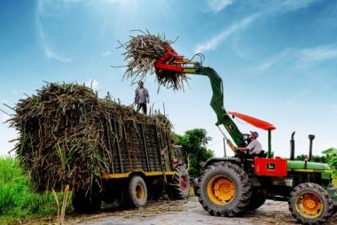 Thủ tướng ban hành chỉ thị nhằm phát triển ngành mía đường