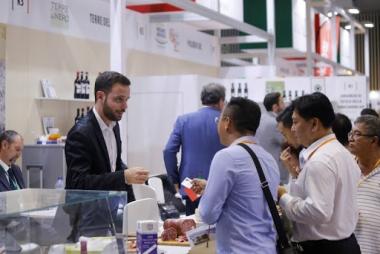 Các doanh nghiệp châu Âu tại Việt Nam lạc quan trở lại sau đại dịch Covid-19