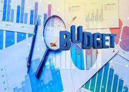 Thu NSNN đến ngày 15/7/2020 bằng 46,1% dự toán năm