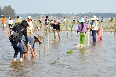 Ứng phó với biến đổi khí hậu để phát triển nông nghiệp