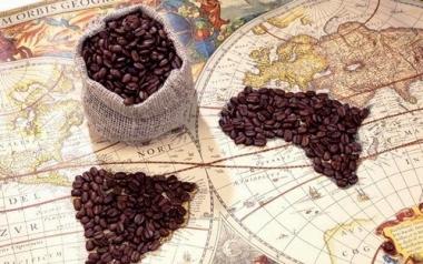 Sản lượng cà phê toàn cầu và các dự báo