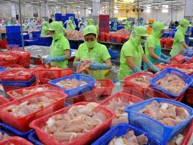 Thấy gì từ việc EU sẽ thanh tra toàn diện thủy sản nuôi của Việt Nam từ năm 2017