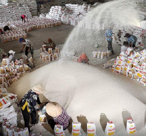Bảo đảm kim ngạch xuất khẩu gạo ở mức 3 tỷ USD/năm vào năm 2017
