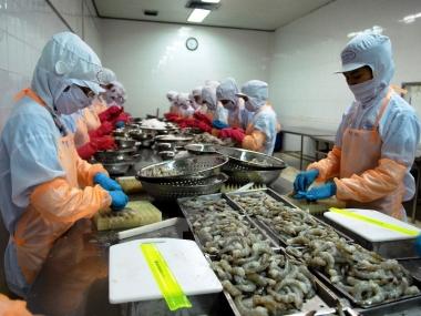 8 tháng, xuất khẩu nông lâm thủy sản đạt 20,06 tỷ USD