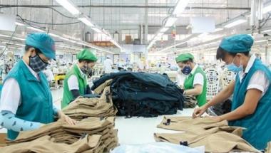 Cả nước có 11.655 doanh nghiệp thành lập mới trong tháng 8