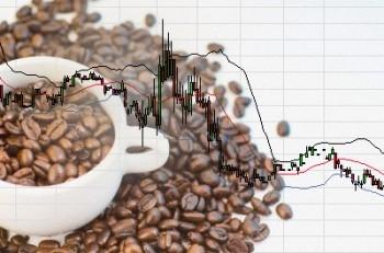Tổng quan thị trường cà phê tháng 8/2015