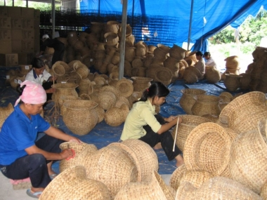 Chỉ có 10% số hợp tác xã nông nghiệp hoạt động tốt