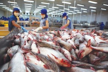 Quý IV/2016, xuất khẩu cá tra sang ASEAN tăng cao nhất 10%