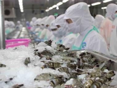 Hoa Kỳ áp thuế 4,58% đối với tôm Việt Nam
