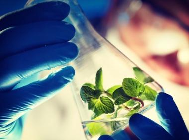 Tiền đề áp dụng sinh học trong công nghệ triển vọng thế nào?