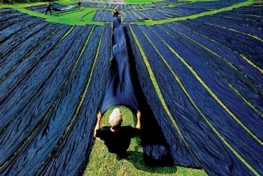 Công viên tơ lụa Nam Á Châu giữa lòng thương xá
