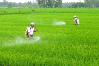 Áp dụng công nghệ sản xuất sạch để bảo vệ môi trường