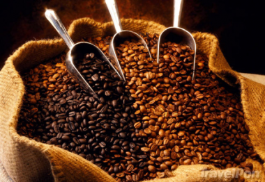 Dự báo xu thế giá cà phê trong những tháng cuối năm 2015