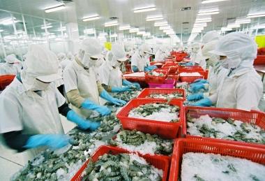 Kim ngạch xuất khẩu nông, lâm, thủy sản tháng 10 vẫn tiếp đà sụt  giảm