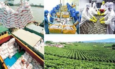 Kim ngạch xuất khẩu nông, lâm, thủy sản đạt 26,4 tỷ USD trong 10 tháng