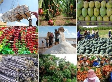 Xuất khẩu nông, lâm, thuỷ sản đạt gần 30 tỷ USD