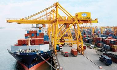 Doanh nghiệp trong nước vượt khối FDI về tăng trưởng xuất khẩu