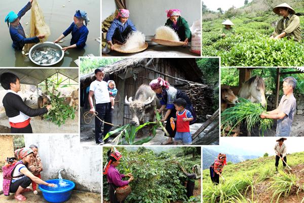 Hơn 3.500 thôn thuộc các xã đặc biệt khó khăn được hỗ trợ xây dựng NTM