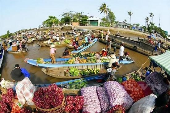 Huyện Chợ Gạo và Thị xã Cai Lậy tỉnh Tiền Giang đạt chuẩn nông thôn mới