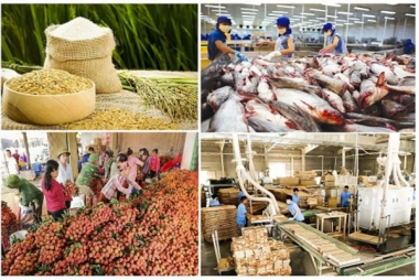 2/3 chặng đường 2020, xuất khẩu nông, lâm và thuỷ sản ước đạt 30,05 tỷ USD