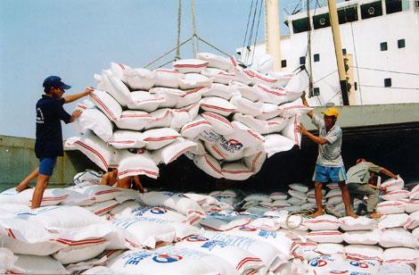 Xuất khẩu gạo Việt Nam khởi sắc trở lại