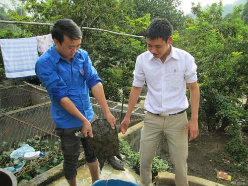 Thanh niên Lai Châu tích cực phát triển kinh tế tập thể