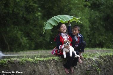 Vẻ đẹp mê hoặc của Việt Nam trên báo Anh