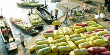 Xem xét việc bãi bỏ Quy hoạch thương nhân kinh doanh xuất khẩu gạo