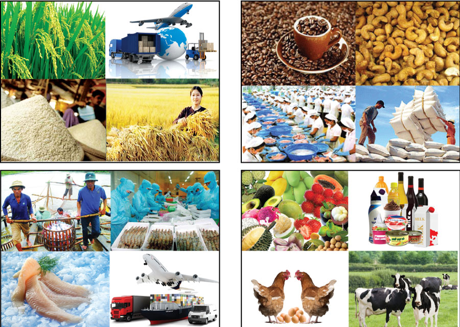 Kim ngạch xuất khẩu nông, lâm, thuỷ sản ước đạt 2,74 tỷ USD