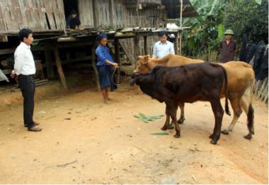Xây dựng nông thôn mới tại các xã biên giới: Khó khăn chồng chất