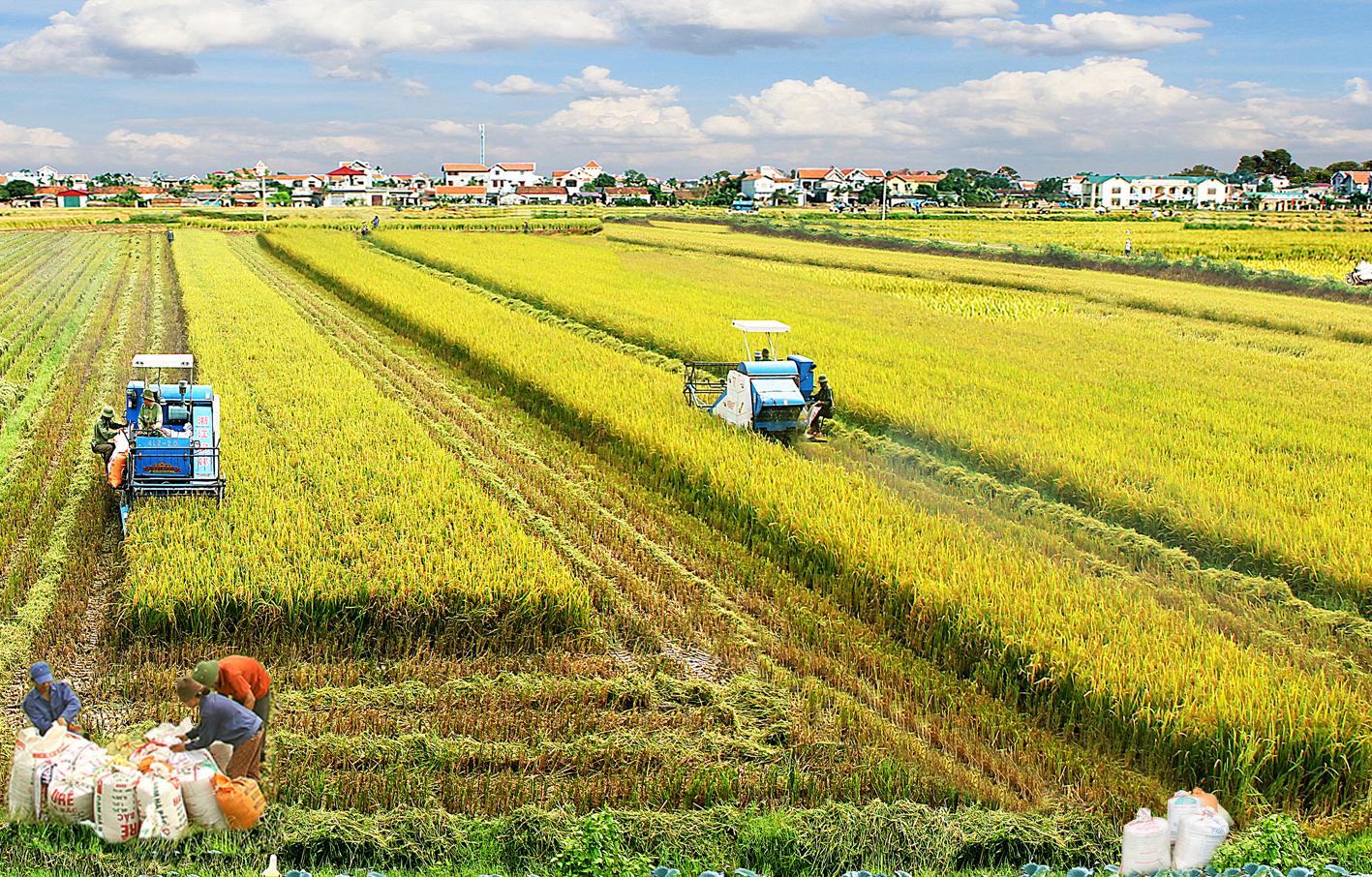 Giải pháp huy động vốn xây dựng nông thôn mới