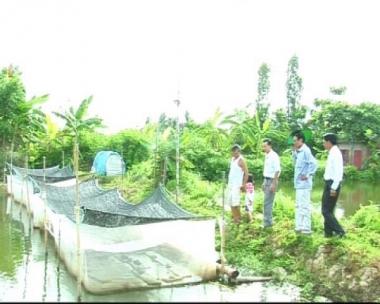 Thành công với nhiều mô hình thanh niên phát triển kinh tế thủy sản