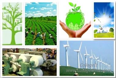 Sẽ thành lập Tổ công tác về tăng trưởng xanh ở các địa phương