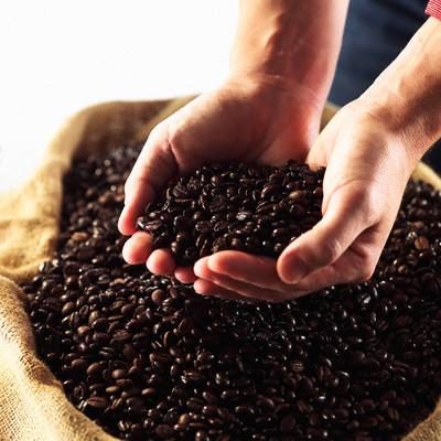 Dự báo tình hình cà phê của 3 nước sản xuất và xuất khẩu cà phê lớn nhất thế giới