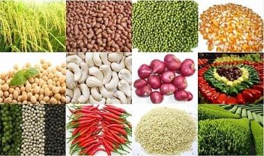 Thị trường nông sản thế giới trong tuần qua