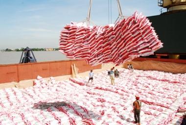VFA: Năm 2015 xuất khẩu 6,55 triệu tấn gạo