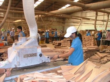 Nâng cao tính minh bạch trong xuất khẩu gỗ sang thị trường EU