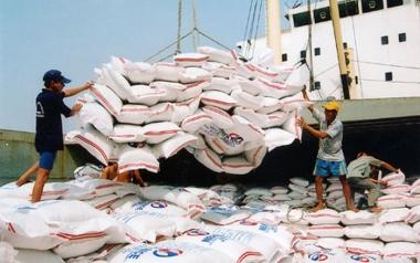 Kỳ vọng tạo đột phá cho kinh doanh xuất khẩu gạo