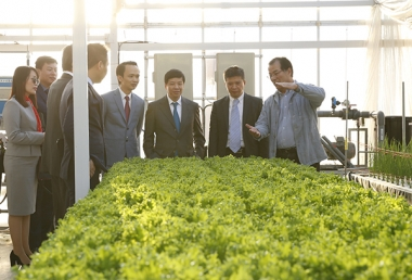 FLC và Farmdo bắt tay làm nông nghiệp