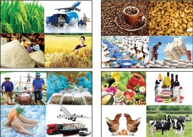 Năm 2017, xuất khẩu nông, lâm, thủy sản đạt 36,37 tỷ USD