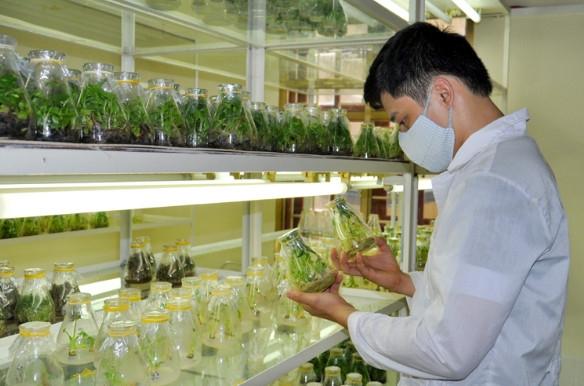 Edtech Vietnam 2021 tìm kiếm ngôi sao khởi nghiệp, ý tưởng sáng tạo để trao giải