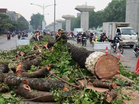 Khởi tố vụ án tại Ban Duy tu Sở Xây dựng Hà Nội và Công ty Công viên cây xanh Hà Nội