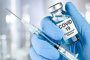 Trường Đại học Y Hà Nội tuyển tình nguyện viên thử nghiệm vaccine COVID-19