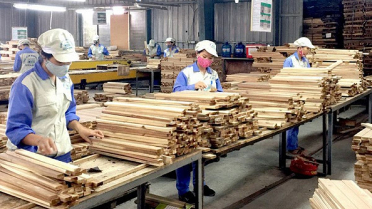 Năm 2025, mục tiêu xuất khẩu gỗ và lâm sản ngoài gỗ đạt khoảng 20 tỷ USD