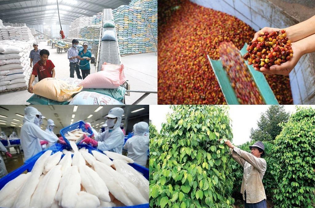 7 tháng đầu năm 2021, kim ngạch xuất khẩu nông, lâm, thủy sản ước đạt 28,6 tỷ USD