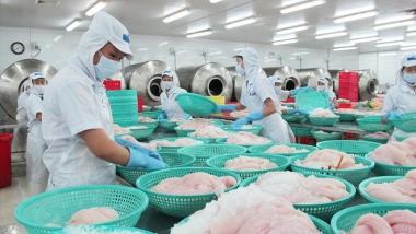 Năm 2030, phấn đấu giá trị kim ngạch xuất khẩu thủy sản đạt 14-16 tỷ USD