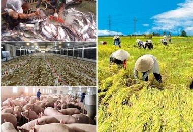 Covid-19 làm ảnh hưởng tới chuỗi cung ứng các sản phẩm nông, lâm nghiệp và thủy sản