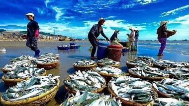 Phó Thủ tướng chỉ đạo tháo gỡ khó khăn trong sản xuất thủy sản do dịch bệnh